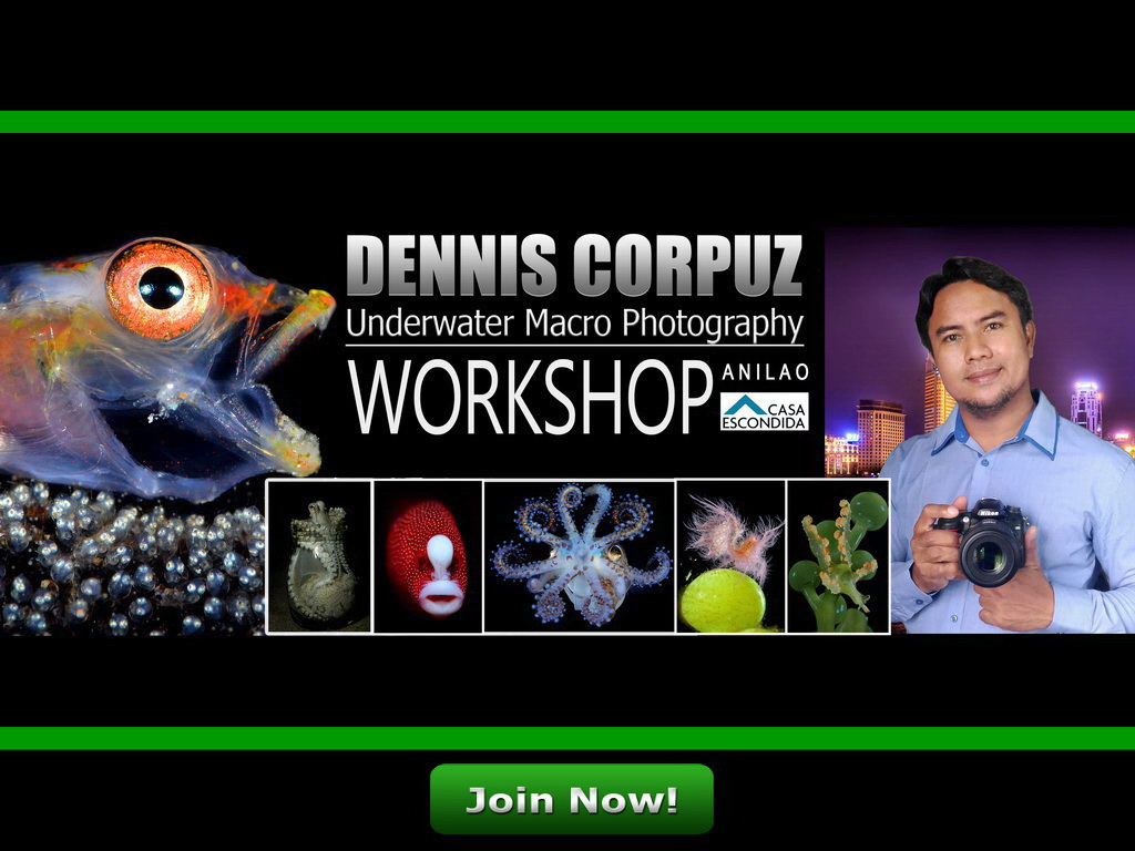 Dennis Corpuz underwater macro Photography workshop